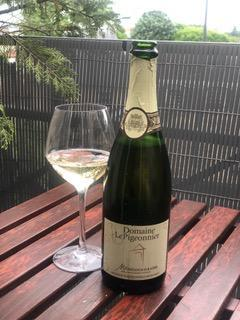 Domaine du pigeonnier montlouis brut methode traditionnelle 1