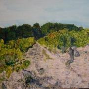 La vallee du rhone par erick delille