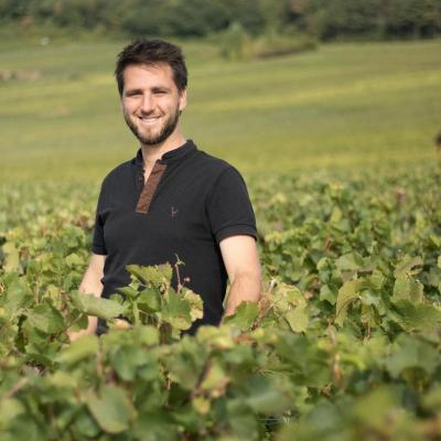 Champagne Fabrice Moreau